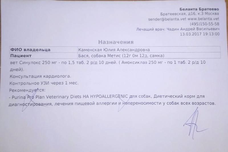 Москва, Бася (метис), 2005 г.  - Страница 5 E47e173f23a8