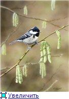 Животные, птицы и насекомые Db5e53199ca8t