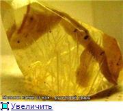 Мыльные камни - Страница 3 A54a529ddbe5t