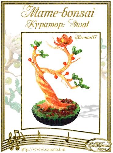 """Галерея """"Mame-bonsai"""" Cce070e1f2aet"""