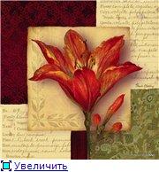 Цветы, букеты 6fbc9010919et
