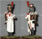 VID soldiers - Napoleonic french army sets 793e45d03e21t