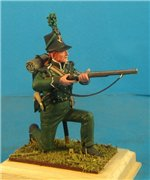 VID soldiers - Napoleonic british army sets 29089a724322t