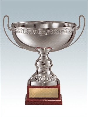 Чемпионы, призеры, обладатели кубка! F79b64163709
