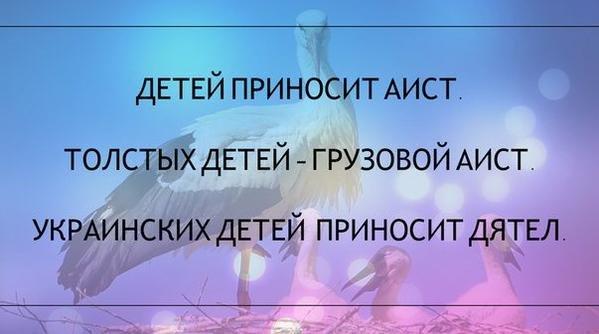 Юмор и демотиваторы (uncensored) - Страница 39 Bd63fea8d9aa