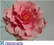 Цветы ручной работы из полимерной глины - Страница 3 775251a5b7b6t