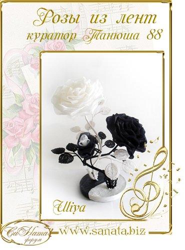 Награды Uliya Caf1fb9ab594t