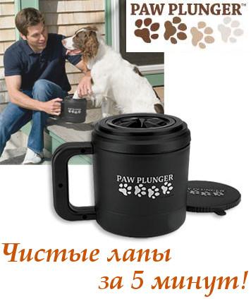 Интернет-магазин Red Dog- только качественные товары для собак! 33616475802f