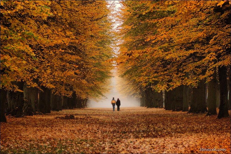 """КОНКУРС """"Осень: лучшее время года. """" Eb04fd24970f"""
