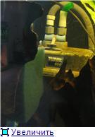 Внешники внутри аквариума 2638af3c5038t