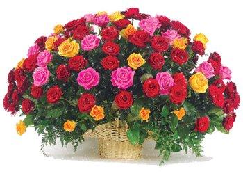 Поздравляем с Днем Рождения Юлию (Juliya81) Dbe92bfef4f1t