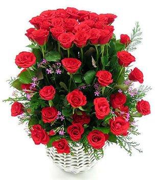Поздравляем с Днем Рождения Наталью (Dormich) Aba1c255ac27t