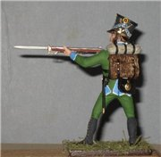 VID soldiers - Napoleonic wurttemberg army sets 54de5abb0e8et