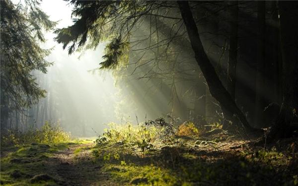 """Фанфик """"В баварские Альпы к """"Сказочному Королю"""" - Страница 2 17266916f529"""