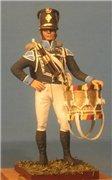 VID soldiers - Napoleonic wurttemberg army sets 690ec3ba75bbt