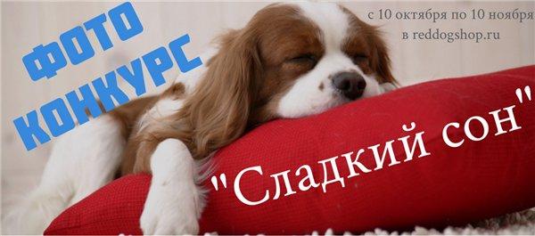 Интернет-зоомагазин Red Dog: только качественные товары для  - Страница 7 3ed825de054e