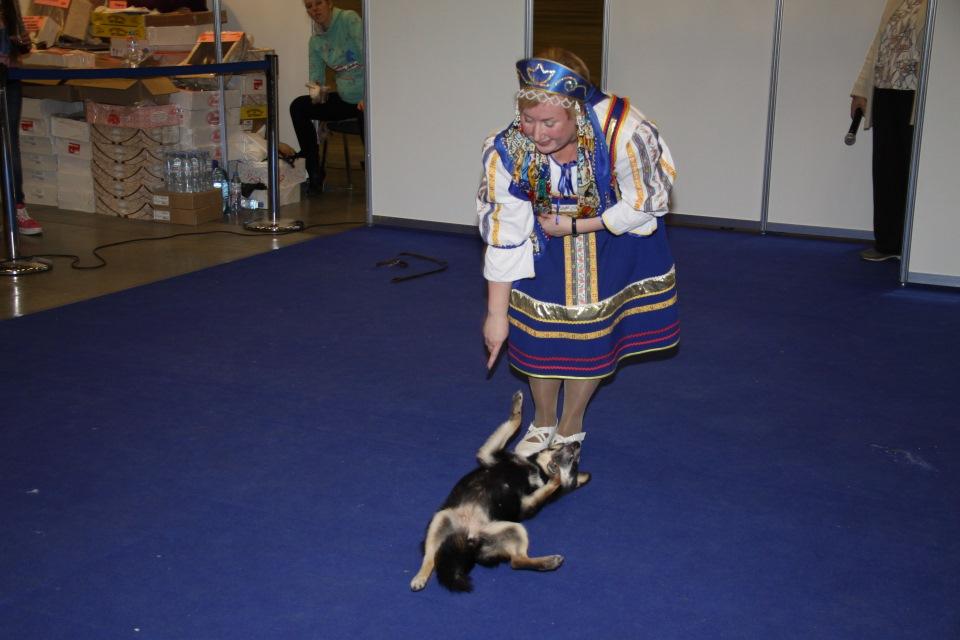 Танцы с собаками - Страница 3 Ebc106ed6dec