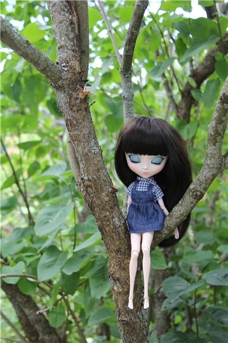 Сет Doll Carnival Twins (LE) — декабрь 2010 0593af5dc2eb
