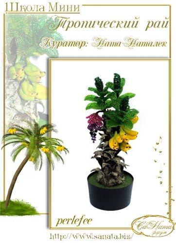 Выпуск работ Школы мини - Тропический рай E041fd535ff5t