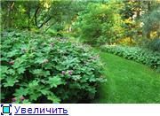 Моя Болгария. Рассказывает Eli4ka 161359840b32t