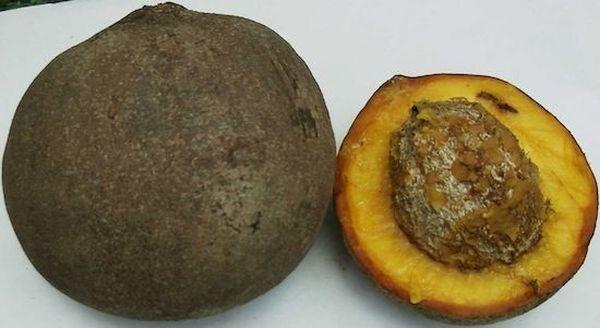 Интересные факты о фруктах. Eec286b5ba22