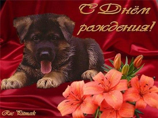 С Днём Рождения, ДМИТРИЙ! (МАТРОСКИН) Bbacf95dbb02