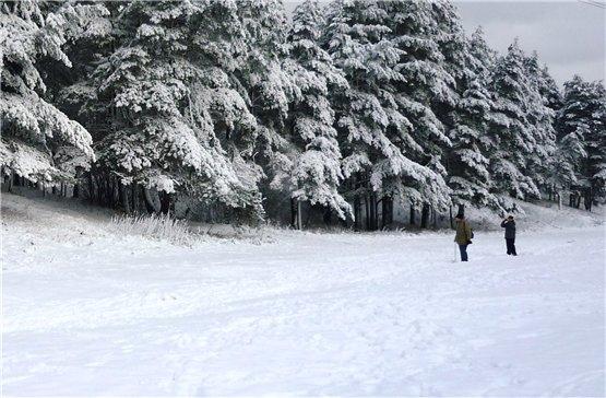 Зимняя сказка на наших фотографиях - Страница 6 079a22943f18