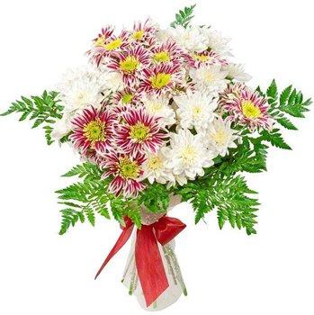 Поздравляем с Днем Рождения Алену (Алёна Ниценко) D277083c655bt