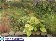 Cад Людмилы Ивановой из черкасс 5c3cb9e2a97dt