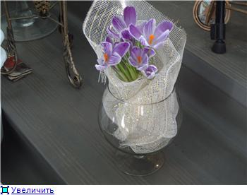 Выгонка луковичных. Тюльпаны, крокусы и др. - Страница 11 6cdd4423b0e9t