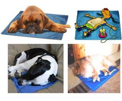 Интернет-зоомагазин Pet Gear - Страница 3 B11dd8fceedf