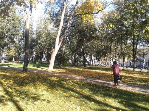 Осень, осень ... как ты хороша...( наше фотонастроение) - Страница 7 Ac0da5042ba8