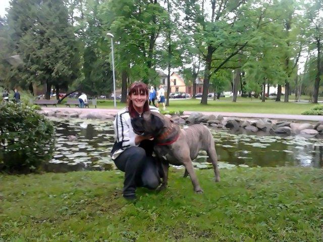 Наши собаки, друзья и гости, кот Мензурка - Страница 4 40f451f524c3