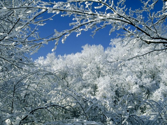 Зимняя сказка 27e974d405be