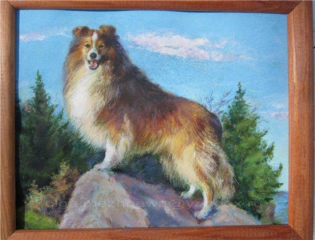 Рисую собак по фото - Страница 6 B6ca24507dbc