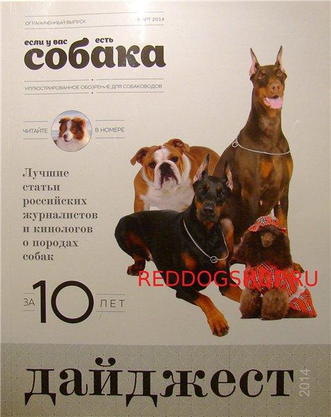 Интернет-магазин Red Dog- только качественные товары для собак! 76393ead0e69