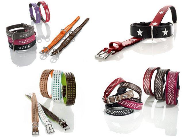 Интернет-магазин Red Dog- только качественные товары для собак! E496188a91a7