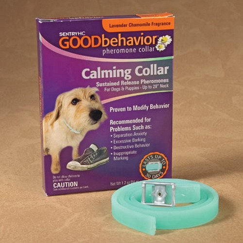 Интернет-зоомагазин Pet Gear - Страница 5 1344bd93d432