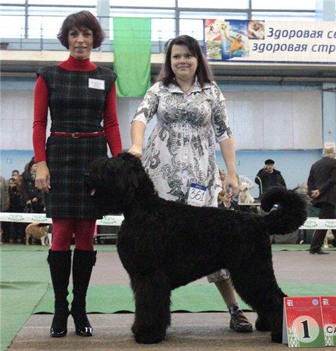2хCACIB 26-27 ноября 2011 в Минске 937840b1e89d