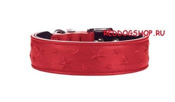 Интернет-зоомагазин Red Dog: только качественные товары для собак и кошек! 0cbf06b8f549