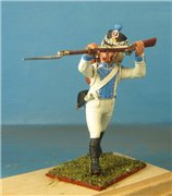 VID soldiers - Napoleonic westphalian troops 5ef71f559bd9t