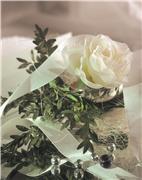 Цветы (flowers) 393e7dff5ff4t