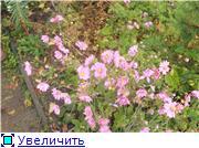 Cад Людмилы Ивановой из черкасс 25731aa97253t