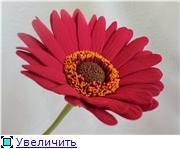 Цветы ручной работы из полимерной глины - Страница 5 Ba4125d6c765t
