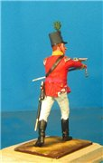 VID soldiers - Napoleonic british army sets 79c7d713dd37t