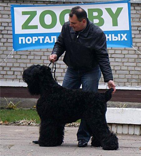 23 октября 2011 выставки в Молодечно - Страница 2 D792b315c65d