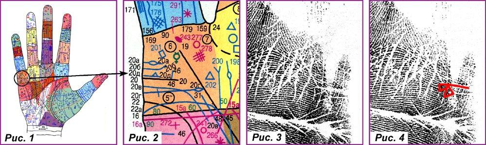 Основные, второстепенные, редкие линии и знаки B565649f9e82