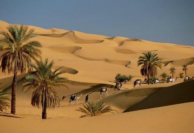 Дороги Пустыни 23f0a6cba35a