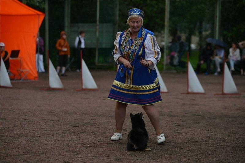 Танцы с собаками - Страница 3 70148fe7f522