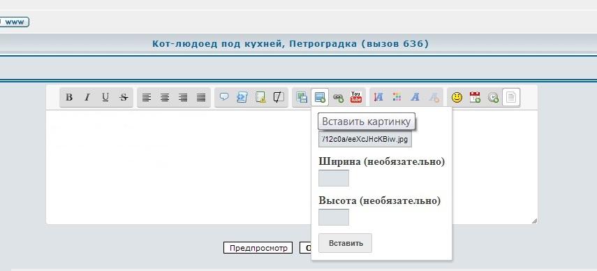 Кот-людоед под кухней, Петроградка (вызов 636) 9c47862f56e5
